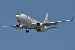 qooさんが、福岡空港で撮影した日本航空 737-846の航空フォト(飛行機 写真・画像)
