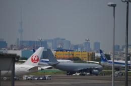 hirokongさんが、羽田空港で撮影したイギリス空軍 A330-243/MRTTの航空フォト(飛行機 写真・画像)