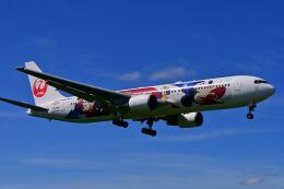 天心さんが、伊丹空港で撮影した日本航空 767-346/ERの航空フォト(飛行機 写真・画像)