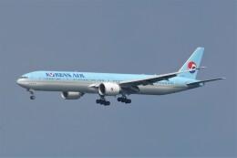 JUTENさんが、中部国際空港で撮影した大韓航空 777-3B5/ERの航空フォト(飛行機 写真・画像)