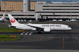Deepさんが、羽田空港で撮影した日本航空 787-8 Dreamlinerの航空フォト(飛行機 写真・画像)