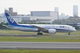 HEATHROWさんが、伊丹空港で撮影した全日空 787-8 Dreamlinerの航空フォト(飛行機 写真・画像)