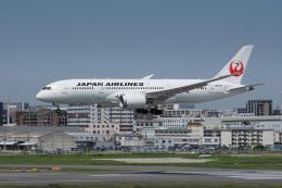 神宮寺ももさんが、福岡空港で撮影した日本航空 787-8 Dreamlinerの航空フォト(飛行機 写真・画像)