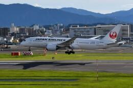 pottanさんが、福岡空港で撮影した日本航空 787-8 Dreamlinerの航空フォト(飛行機 写真・画像)