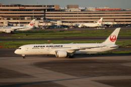 HYF 350さんが、羽田空港で撮影した日本航空 787-9の航空フォト(飛行機 写真・画像)