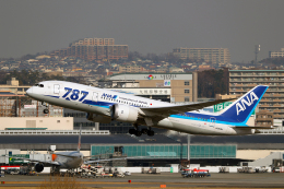AkiChup0nさんが、伊丹空港で撮影した全日空 787-8 Dreamlinerの航空フォト(飛行機 写真・画像)