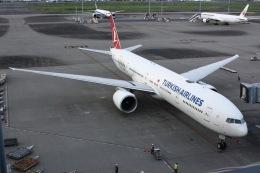 しゃこ隊さんが、羽田空港で撮影したターキッシュ・エアラインズ 777-3F2/ERの航空フォト(飛行機 写真・画像)