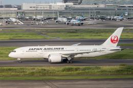Y-Kenzoさんが、羽田空港で撮影した日本航空 787-8 Dreamlinerの航空フォト(飛行機 写真・画像)