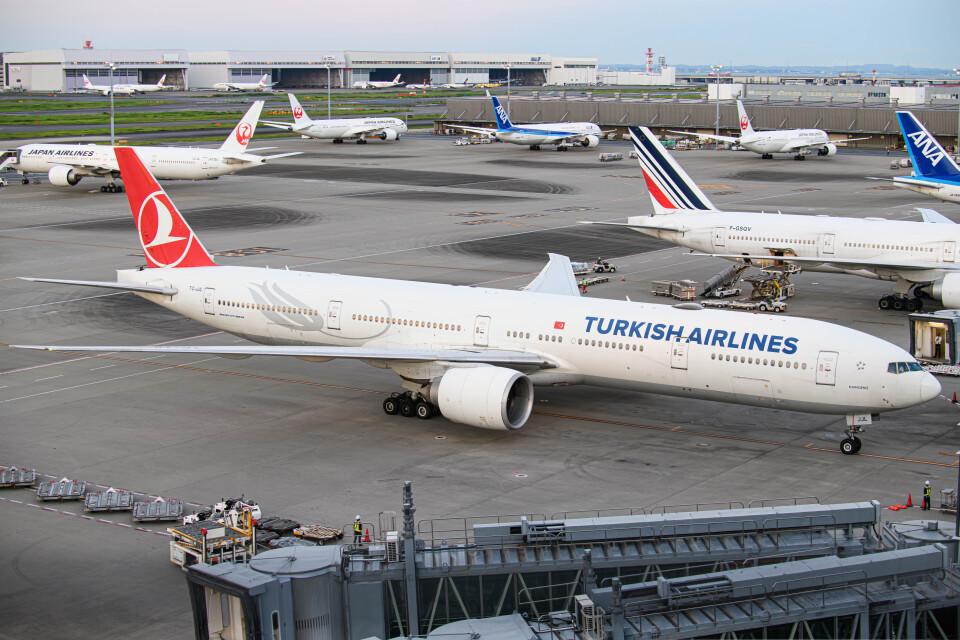 kuraykiさんのターキッシュ・エアラインズ Boeing 777-300 (TC-JJL) 航空フォト