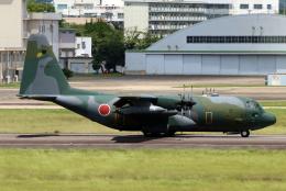 なごやんさんが、名古屋飛行場で撮影した航空自衛隊 C-130H Herculesの航空フォト(飛行機 写真・画像)
