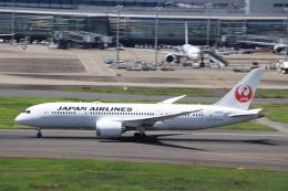 天王寺王子さんが、羽田空港で撮影した日本航空 787-8 Dreamlinerの航空フォト(飛行機 写真・画像)