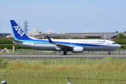 md11jbirdさんが、伊丹空港で撮影した全日空 737-881の航空フォト(飛行機 写真・画像)