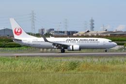 md11jbirdさんが、伊丹空港で撮影した日本航空 737-846の航空フォト(飛行機 写真・画像)