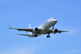 md11jbirdさんが、伊丹空港で撮影したジェイエア ERJ-190-100(ERJ-190STD)の航空フォト(飛行機 写真・画像)