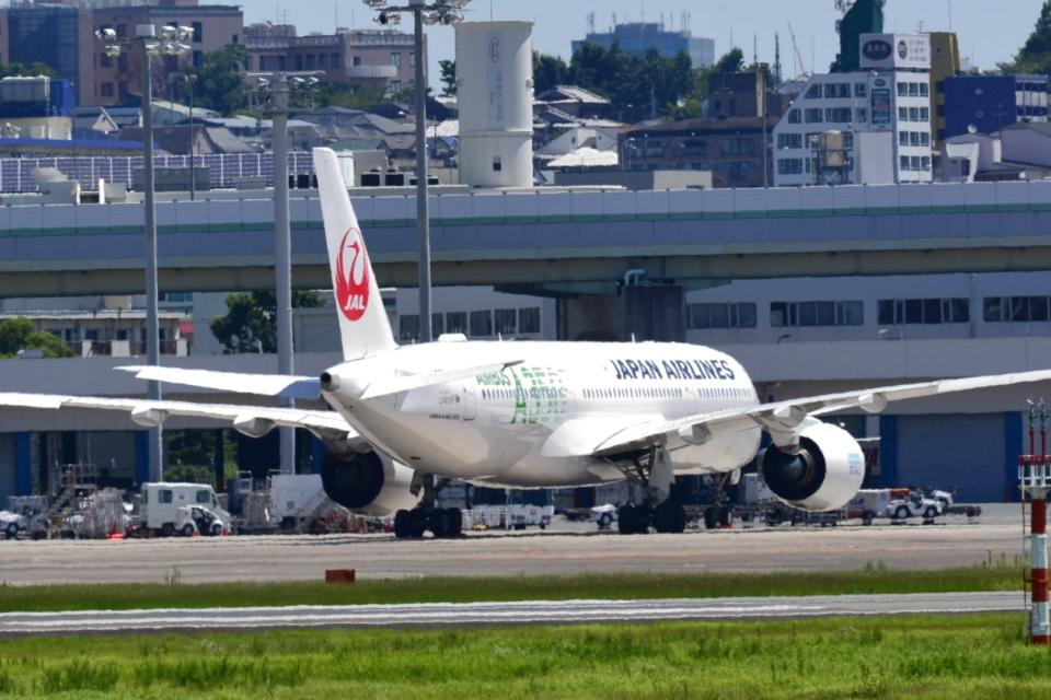 md11jbirdさんの日本航空 Airbus A350-900 (JA03XJ) 航空フォト
