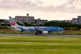 shao804さんが、宮古空港で撮影した日本トランスオーシャン航空 737-8Q3の航空フォト(飛行機 写真・画像)