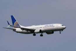 多楽さんが、成田国際空港で撮影したユナイテッド航空 737-824の航空フォト(飛行機 写真・画像)