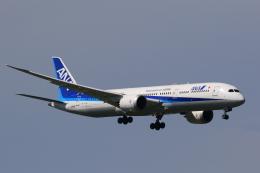 多楽さんが、成田国際空港で撮影した全日空 787-9の航空フォト(飛行機 写真・画像)