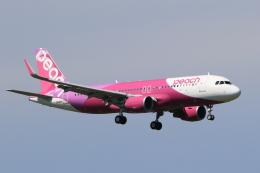 多楽さんが、成田国際空港で撮影したピーチ A320-214の航空フォト(飛行機 写真・画像)