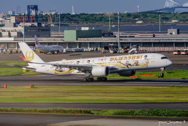 航空フォト:JA06XJ 日本航空 A350-900
