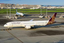 ぱん_くまさんが、羽田空港で撮影したビスタラ 787-9の航空フォト(飛行機 写真・画像)