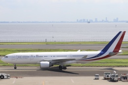 パピヨンさんが、羽田空港で撮影したフランス空軍 A330-223の航空フォト(飛行機 写真・画像)