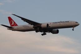 imosaさんが、羽田空港で撮影したターキッシュ・エアラインズ 777-3F2/ERの航空フォト(飛行機 写真・画像)