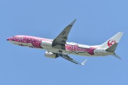 れぐぽよさんが、小松空港で撮影した日本トランスオーシャン航空 737-8Q3の航空フォト(飛行機 写真・画像)