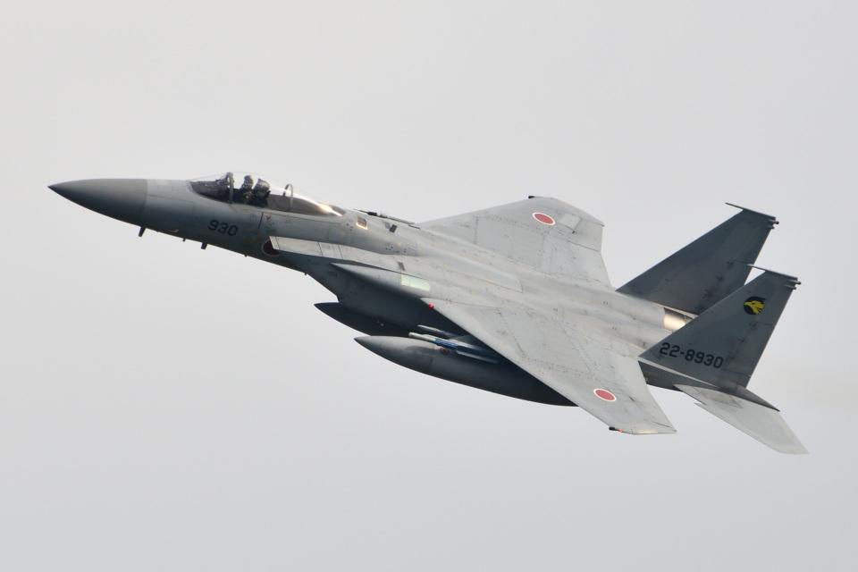 れぐぽよさんの航空自衛隊 Mitsubishi F-15J Eagle (22-8930) 航空フォト