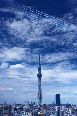 空港外で撮影された航空自衛隊 - Japan Air Self-Defense Forceの航空機写真