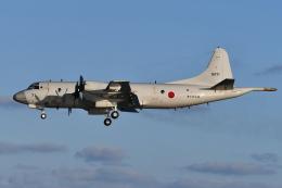 Deepさんが、那覇空港で撮影した海上自衛隊 P-3Cの航空フォト(飛行機 写真・画像)