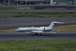 ぬま_FJHさんが、羽田空港で撮影した海上保安庁 G-V Gulfstream Vの航空フォト(飛行機 写真・画像)