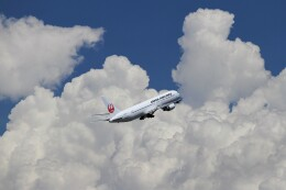 BTYUTAさんが、羽田空港で撮影した日本航空 767-346/ERの航空フォト(飛行機 写真・画像)