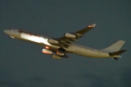 木人さんが、成田国際空港で撮影したスパイスジェット A340-313Xの航空フォト(飛行機 写真・画像)