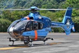 ブルーさんさんが、静岡ヘリポートで撮影した福井県警察 EC135T2+の航空フォト(飛行機 写真・画像)