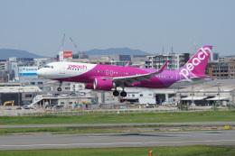神宮寺ももさんが、福岡空港で撮影したピーチ A320-251Nの航空フォト(飛行機 写真・画像)