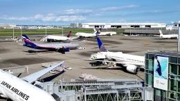 チャレンジャーさんが、羽田空港で撮影したアエロフロート・ロシア航空 A330-343Xの航空フォト(飛行機 写真・画像)