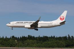 North1973さんが、女満別空港で撮影した日本航空 737-846の航空フォト(飛行機 写真・画像)