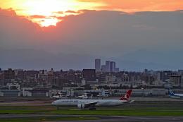 Souma2005さんが、羽田空港で撮影したターキッシュ・エアラインズ 777-3F2/ERの航空フォト(飛行機 写真・画像)