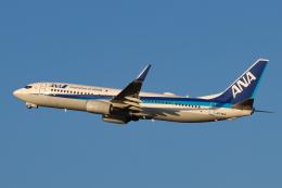 North1973さんが、新千歳空港で撮影した全日空 737-881の航空フォト(飛行機 写真・画像)