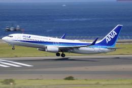 ▲®さんが、中部国際空港で撮影した全日空 737-881の航空フォト(飛行機 写真・画像)