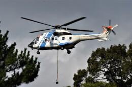 MSN/PFさんが、名古屋城で撮影した中日本航空 AS332L1 Super Pumaの航空フォト(飛行機 写真・画像)