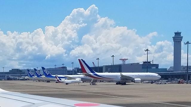 チャレンジャーさんが、羽田空港で撮影したフランス空軍 A330-223の航空フォト(飛行機 写真・画像)