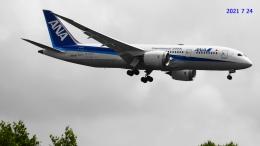 SNAKEさんが、新千歳空港で撮影したエアージャパン 787-8 Dreamlinerの航空フォト(飛行機 写真・画像)