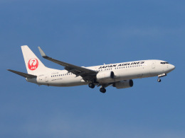 丸めがねさんが、羽田空港で撮影した日本航空 737-846の航空フォト(飛行機 写真・画像)