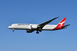 ポン太さんが、成田国際空港で撮影したカンタス航空 787-9の航空フォト(飛行機 写真・画像)