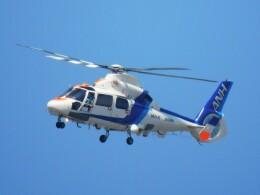 tetuさんが、札幌飛行場で撮影したオールニッポンヘリコプター AS365N2 Dauphin 2の航空フォト(飛行機 写真・画像)
