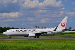 天心さんが、伊丹空港で撮影した日本航空 737-846の航空フォト(飛行機 写真・画像)