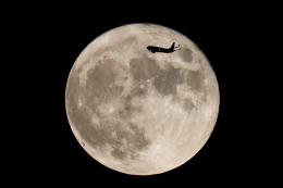 AkiChup0nさんが、羽田空港で撮影したスカイマーク 737-8HXの航空フォト(飛行機 写真・画像)