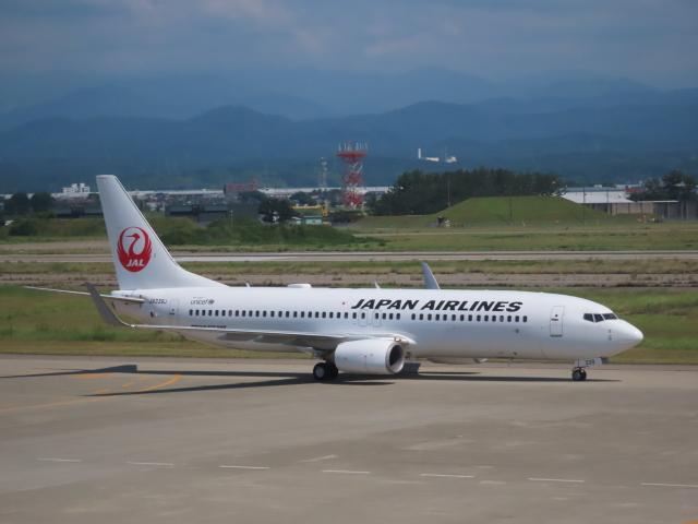 エアキンさんが、小松空港で撮影した日本航空 737-846の航空フォト(飛行機 写真・画像)